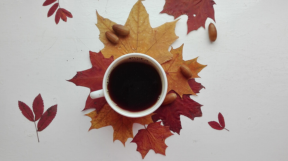 秋の紅茶アレンジレシピ