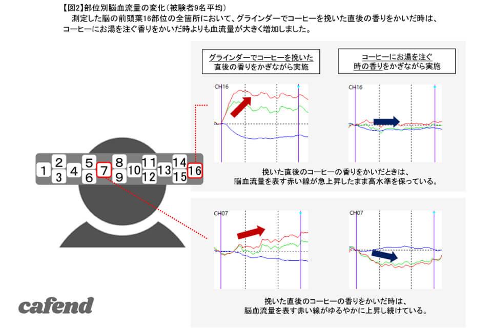 メリタ×脳科学グラフ1