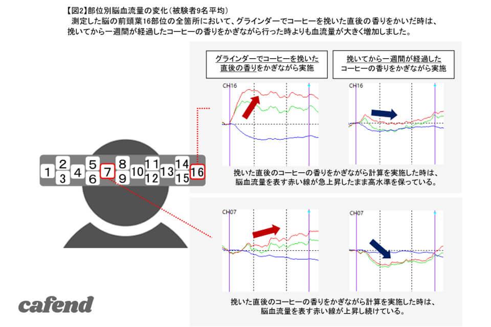メリタ×脳科学グラフ2