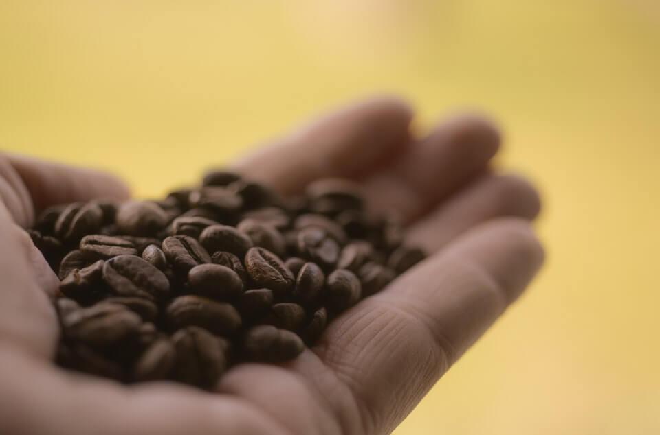 コーヒー生産