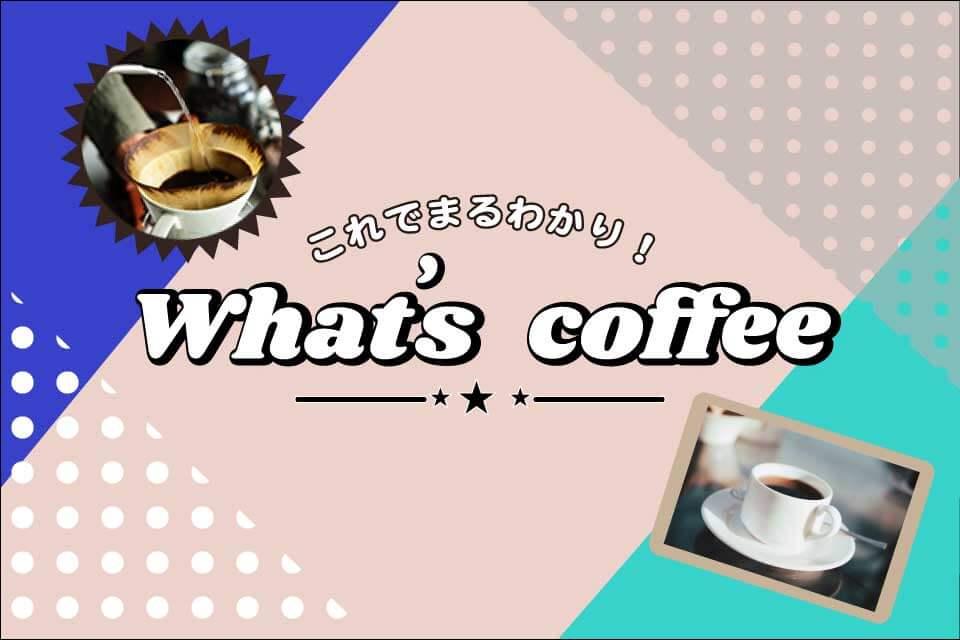 whats_coffee_コーヒーの基本を学ぶ
