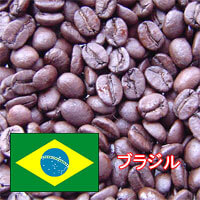 cafevita_おすすめの豆